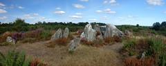 Le dolmen nommé le « Four Sarrazin » sur les landes de Cojoux à Saint-Just - Ille-et-Vilaine - Septembre 2018 - 04 (Erwan Corre) Tags: bretagne illeetvilaine cojoux landesdecojoux grée saintjust stjust dolmen alléecouverte mégalithe menhir cupules pierreschevêches chevêche four sarrazin foursarrazin
