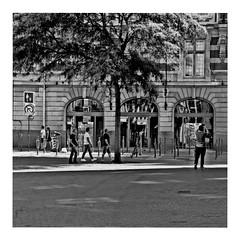 they walked in line (japanese forms) Tags: ©japaneseforms2018 ボケ味 モノクロ 日本フォーム 自転車 黒と白 bw blackwhite blackandwhite blancoynegro bokeh candid joydivision monochrome random schwarzweis square squareformat strasenfotografie straatfotografie streetphotography theywalkedinline vlaanderen zwartwit