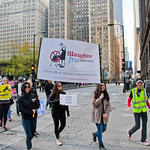 Midwest March for Animals Chicago Illinois 10-14-18 4617 thumbnail