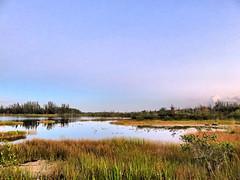 Calm morning 20181018 (Kenneth Cole Schneider) Tags: florida miramar westmiramarwca