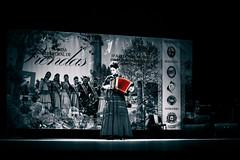 Sonhos em flor... (mauroheinrich) Tags: gaúcha gaúchas prendas tradição tradicionalismo cultura costumes gauchos gaúchos tradições ctg ciranda de riograndedosul brasil mauroheinrich campo bomrs
