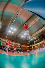_FPV3137 (américodias) Tags: viana365 benfica sporting voleibol fpv