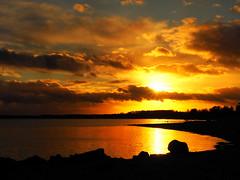 golden sunset (Ostseeleuchte) Tags: goldensunset sonnenuntergang ostsee balticsea sierksdorfhaffkrug wolkenhimmel clouds reflections spiegelungen goldenwater goldenclouds northerngermany