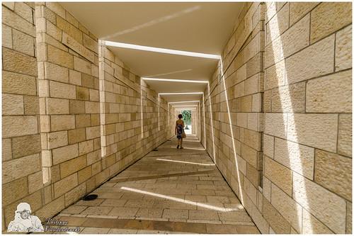 0069 holocaust memorial miami