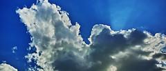 20181106_DP0Q4964-21x9 (NAMARA EXPRESS) Tags: landscape nature sky cloud 219 ray shine plane airplane aeroplane jetplane daytime autumn fall fine outdoor color foveonclassicblue toyonaka osaka japan spp spp661 foveon x3 sigma dp0 quattro wide ultrawide superwide namaraexp
