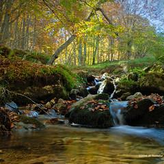Automne du ruisseau de l'Escloupet (jpto_55) Tags: ruisseau ruisseaudelescloupet eau cascade poselongue xt20 fuji fujifilm fujixf1855mmf284r ariège france automne