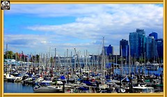 This is 1 of 11, a series on Vancouver surrounds, Canada (> Pinoy) Tags: vancouver cityofvancouver britishcolumbia blues bluehour 2018 2019 2020 4k 4kcameras handycam highdefinition city ciries canada westerncanada provinceofbc bc docks boats sea seascape seatosky landscape landscapes explore exploring exploringcanada travel traveler travels citiesofcanada canadian canadasbeauty trees sky clouds scenery scenic scenes sony sonyfdrax53camera sonycameragroups tcr framed parks stanleypark