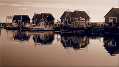 The fishing port Tarnewitz (Ostseetroll) Tags: boltenhagen deu deutschland geo:lat=5397359350 geo:lon=1124657661 geotagged mecklenburgvorpommern tarnewitz fischereihafen fishingport ostsee balticsea boote boats port hafen olympus em10markii