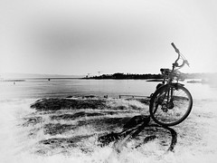 (Natalia Medd) Tags: bike bw monochrome sea seaside ocean couple shadow grass street