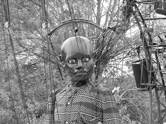 BW BOY  FACE (garydavidworthington) Tags: liverpoolsdream giants liverpool photography banjosandwitch blackandwhite people boy dog xolo dream radio trees crowd princespark uk creative city costume chair crane umberella cool art artistic puppet animal mechanical steam marionette royaldeluxe french france jeanluccourcoult littleboy black white giantspectacular