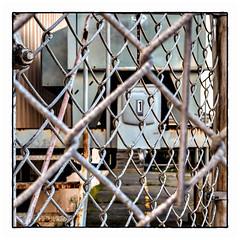 1 (Timothy Valentine) Tags: 2018 0818 large gallivanting 1 friday fence newbedford massachusetts unitedstates us