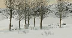 Eternal snow WIP3 (Monica_ML) Tags: secondlife sl winter snow eternal wip