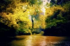 Fairytale place ... (Julie Greg) Tags: fairytaleplace fairytale nature colours soft tree trees castle river water nautre bridge