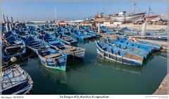 Les barques et le chantier de réparation (MarcEnGalerie) Tags: barque maroc bateaux voyage morocco vacances essaouira mar