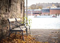Sthlm_DoubleSeat_7-5 (minipix.se) Tags: sthlm stockholm bench city cityscape cityview autumn fall sweden waterscape