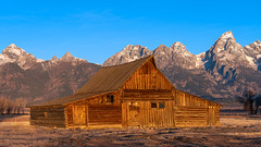 The Golden Barn (Star Wizard) Tags: moose wyoming unitedstates us