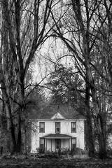 Among The Trees (Ian Sane) Tags: ian sane images amongthetrees house tall trees saint st louis oregon blackwhite monochrome photography canon eos 5ds r camera ef100400mm f4556l is usm lens monochromemonday