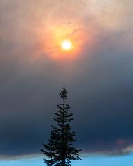 fire not far away (LightInThisWorld) Tags: nikon1 nikon1v1 nikonv1 elcapitan fire yosemite national park yosemitenationalpark yosemitenp disaster sun smoke clouds cloudy