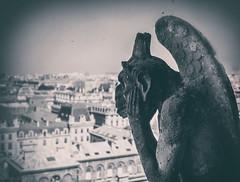 Vigilante  /  Vigilant (invesado) Tags: paris notre damme gargola catedral texturas vigilante nikon voigthlander viñeteo