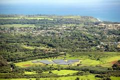 Solar Farm Near Kapa'a (kahunapulej) Tags: princeville hawaii usa kauai recreation sleeping giant trail solar panel farm electricity renewable
