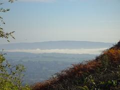 Inversion Mist, Wentwood, Monmouthshire 19 October 2018 (Cold War Warrior) Tags: inversion mist wentwood cwmbran blaenbran