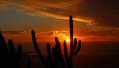 Pichidangui, IV región (Lulú Urrutia) Tags: pichidangui atardecer sunset chile cactus montañas outdoor invierno coquimbo intensidad oceano costa sea sol nubes destellos sky