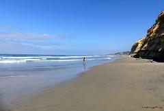 undisturbed (forevertide) Tags: scenicsnotjustlandscapes sky sea ocean beach nicedayonbeach calmness peaceful undisturbed paradise scenery californiabeach swimming blueskies