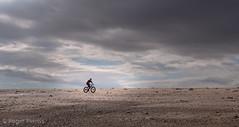 CYCLIST on WASHOVER, SPURN_DSC_2074_LR_2.5-2 (Roger Perriss) Tags: kilnsea spurnhead d750 cyclist beach shingle bank sky clouds vista cycling riding bike lonely solo spurn