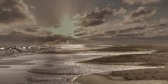 Camargue étendue de plage à perte de vue (Marie du sud) Tags: plage camargue sauvage coucherdesoleil mer