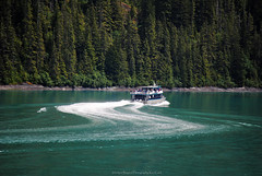 S-Turn (Infinity & Beyond Photography) Tags: alaska scenery landscapes endicott arm fjord water boats shoreline forest insidepassage cruising