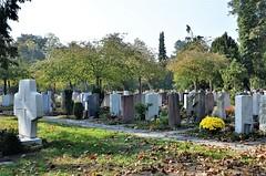 Solothurn Cemetery 20.10.2018 (tabbynera) Tags: cemetery