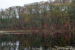 quabbinreservoir2018-125 (gtxjimmy) Tags: nikond7500 nikon d7500 quabbinreservoir newengland massachusetts belchertown ware autumn fall reservoir quabbin lakewallace