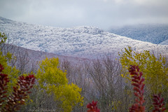 Pico Moiuntain and Foliage_0311 (smack53) Tags: smack53 mendon vermont picomountain mountains snow snowfall snowy snowstorm snowscape fall fallseason fallcolors foliage autumn autumnseason autumncolors nikon d3100 nikond3100