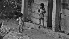 """INDONESIEN, Sulawesi, Im Norden, Auf dem Land bei Batutumonga, Kinder, 17744/10765 (roba66) Tags: mädchen girl kid child kind kinder children kids girls sulawesi urlaub reisen travel explore voyages rundreise visit tourism asien asia indonesien indonesia insel celebes island île insulaire isla menschenkinderdorfvillagebatutumonga monochrome blackwhite bw blancoynegro swbw negro blackandwhite blancoenero byn bretoebranco einfarbig """"schwarzweis"""" roba66"""