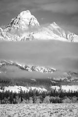 Grand Teton National Park, Wyoming. March, 2018. (Guillermo Esteves) Tags: fujifilm blackandwhite landscapes grandteton grandtetonnationalpark nationalparks fujifilmxt2 unitedstates wyoming jackson us