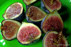 Figs (Tony Worrall) Tags: figs fruit color colourful food foodphoto foodporn foodstuffs eating dinner with half foodphotography foodshot picsoffood eaten cooking nice natural healthy green juicy fresh tasty taste snack grub buy sell sale bought stock item made nature round cut lunch dine collection cool instagram group many