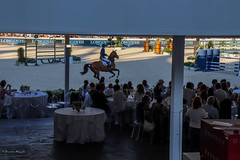 Longines Global Champions Tour (BenedictaMLee026) Tags: cavalli gatti cavallo scuderia lifestyle dailylife horses horse chestnut cats orange morning barn stable routine canon canonphotography green longines parade carousel parata carosello ufficiali militari insegnanti lanceri