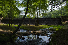 Andrea Fuhrman Photography (afuhrman829) Tags: photography landscapes outdoors portraits parks stateparks waterfalls mountains chile southcarolina presbyteriancollege