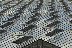 Kassencomplex - 's-Gravenzande (Jan de Neijs Photography) Tags: sgravenzande warenhuis horticulture kas tuinbouw tamron150600 tamron 150600 tamron150600g2 g2 zuidholland nederland holland westland hetwestland nederlandsestreek deglazenstad greenehouse southholland nl breejedurp glas dieniederlande glastuinbouw ramen window luchtramen kassencomplex lijnenspel lijnen windows