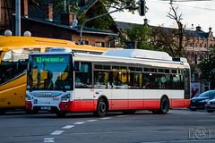 Iveco Urbanway 12M CNG (Slobodan Kostić) Tags: brno dpmb opnv publictransport bus iveco urbanway cng lowfloor irisbus