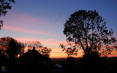 kick-starter for the Saturday at Oudebildtzijl (v a n d e r l a a n . fotografeert) Tags: 201810132724 bb friesland oudebildtzijl sunset zonsopkomst 6ws ouwesyl