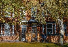 Clifton Green, autumn (Allan Rostron) Tags: yorkshire york suburbs terracedhouses
