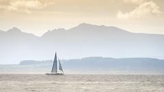 I am sailing. (iancook95) Tags: