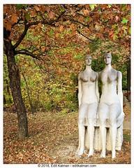 Love them (edit eye) Tags: ariannahuffington autumn budapest couple fall forest huffington leaves life love momentsinbudapest park quotes sculpture statue stone szobor trees