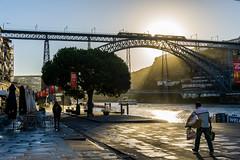 PUENTE DON LUIS I (1886) (bacasr) Tags: puente viajando bridge caminoportugués portugal duero sun pontedonluisi sol ponte cities travelling oporto ciudades porto río river thewayofsaintjames caminodesantiago caminhoprtugues