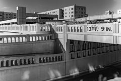 (el zopilote) Tags: 500 albuquerque newmexico architecture street cityscape bridges railroads powerlines signs canon eos 5dmarkii canonef50mmf14usm fullframe bw bn nb blancoynegro blackwhite noiretblanc digitalbw bndigital schwarzweiss monochrome