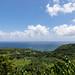 Road to Hana Aussichtspunkt Maui Hawaii