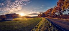 Auf langer Fahrt (Andreas Höschel) Tags: schönau hessen abend herbst sonnenuntergang sonne sun sonnenlicht landschaft landscape strase baum sony a77 himmel sky wolken clouds way weg feld deutschland germany