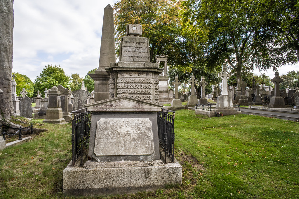 SEPTEMBER 2018 VISIT TO GLASNEVIN CEMETERY [ I USED A BATIS 25mm LENS AND I EXPERIMENTED WITH CAPTURE ONE]-144803