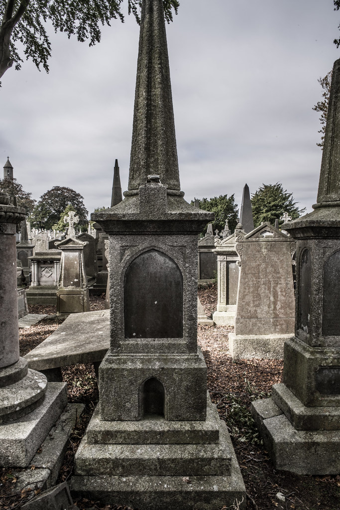 SEPTEMBER 2018 VISIT TO GLASNEVIN CEMETERY [ I USED A BATIS 25mm LENS AND I EXPERIMENTED WITH CAPTURE ONE]-144820